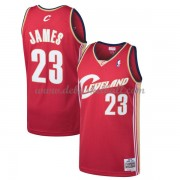 Cleveland Cavaliers Mens 2003-04 LeBron James 23# Wine Hardwood Classics Swingman..